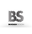 bs b s lines letter design with creative elegant vector image vector image