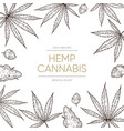 cannabis sketch background medical marijuana vector image