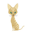 cute cartoon kittie or cat with colored fur vector image vector image