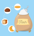 flour ingient bakery bread vector image