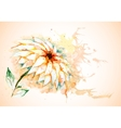 Horizontal background with Lily flower