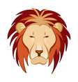 lion in cartoon style vector image vector image