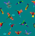 pattern with low poly colorful hummingbird vector image