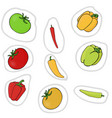 peppers and tomatoes vector image vector image
