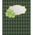 St Patrick's background vector image vector image