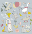 cute farm birds set vector image