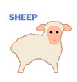 farm animal sheep isolated vector image vector image