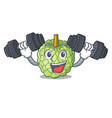 fitness sugar apple fruit isolated on cartoon vector image