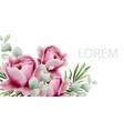 peonies watercolor summer exotic floral vector image vector image