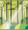 rays of sun light entering in a green forest vector image vector image