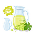 set of natural fresh grapes jar in bank and vector image