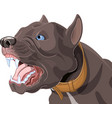 barking dog vector image vector image