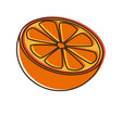 citrus orange fruit vitamins nutrition health food vector image vector image