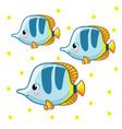 colorful sea fish vector image vector image