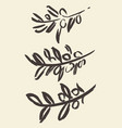 set ink hand drawn olive tree branches vector image vector image
