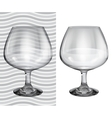 Transparent and opaque realistic brandy glasses vector image vector image