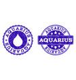 aquarius grunge stamp seals vector image vector image