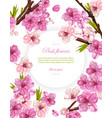 cherry flowers spring card backgrounds vector image vector image