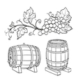 Grape branches and wine barrels vector image vector image