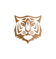 intimidating tiger front view theme logo template vector image