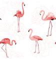 pink flamingo birds rose flowers outline pattern vector image vector image