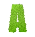 Uppecase letter A consisting of green leaves vector image vector image