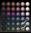 eye shadows palette with makeup brush vector image vector image