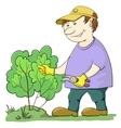 gardener cuts a bush vector image vector image