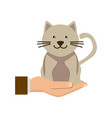 hand holding cat symbol animal protection concept vector image vector image
