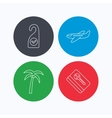 Palm tree air-plane and e-key icons vector image