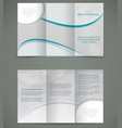 silver brochure layout design business three fold vector image