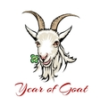 year of goat vector image vector image