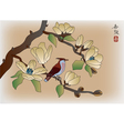Blooming magnolia in spring a bird vector image