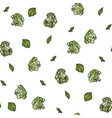broccoli seamless pattern on white background vector image vector image