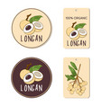 labels set with longan fruit hand drawn vector image vector image