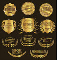 premium quality golden laurel wreath and shield vector image vector image