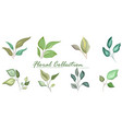 set floral branch green leaves wedding concept vector image vector image