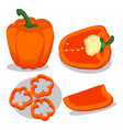 whole ripe vegetables pepper vector image