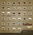 Coffee types and their preparation vector image