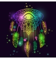 American Indian talisman dreamcatcher with eye vector image vector image