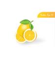 fresh 3d realistic lemon on isolated background vector image