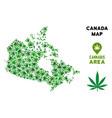 marijuana collage canada map vector image