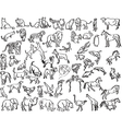 sketches animals vector image vector image