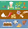 Spices icons banner vector image vector image