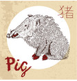 chinese zodiac symbol of etching pig vector image