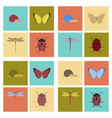 assembly flat bug snail butterfly vector image vector image