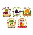 Fresh farm organic vegetables badges set vector image vector image