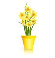 Spring Gardening vector image vector image