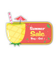 summer sale buy 1 get 1 pineapple juice background vector image