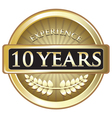 Ten Years Experience Gold vector image vector image